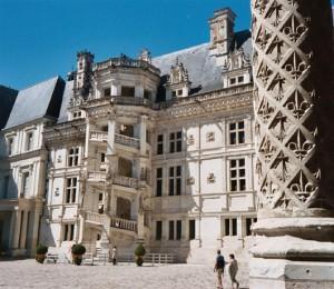 Chat Blois